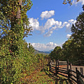 Smoky Mountain Scenery 12 by Marian Bell