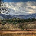 Smoky Mountain Splendor by Douglas Stucky