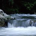 Smoky Mountain Stream by George Ferrell