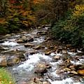 Smoky Mountain Stream by Joy of Life Art Gallery