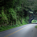 Smoky Mountain Tunnel by Larry Braun