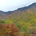 Smoky Mountains National Park 4 by Cindy McFadden