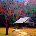 Smoky Mtn. Cabin by Paul W Faust -  Impressions of Light