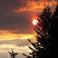 Smoky Sun by Lori Mahaffey