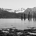 Smooth Seward Alaska Grayscale by Jennifer White