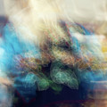 Smudge 244 by M Bubba Blume