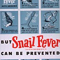 Snail Fever by MotionAge Designs