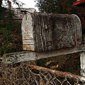 Snail Mail Receptacle by Jay Ressler