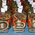 Snake In A Bottle by Sally Weigand