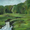 Snake Like Creek 2 Maine by Claire Gagnon