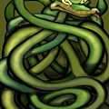 Snakes by Kevin Middleton