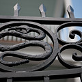 Snakes On A Gate by Dale Powell