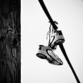 Sneakers On Power Line by Bill Cannon