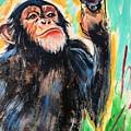 Snooty Monkey by Sandra Dee