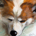 Snooze by Mary Sparrow