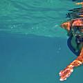 Snorkeler 2 by Bette Phelan
