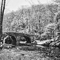 Snow Along The Wissahickon Creek by Bill Cannon