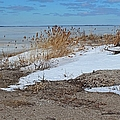 Snow And Sand by Michiale Schneider