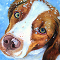 Snow Baby - Brittany Spaniel by Lyn Cook