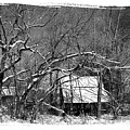 Snow Barn by Anthony C Ellis