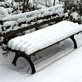 Snow Bench by Valerie Ornstein