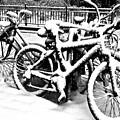 Snow Bicycles by Debra Banks