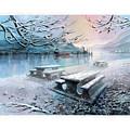 Snow Blanket by Dumitru Barliga