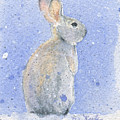 Snow Bunny 2 by Marsha Karle