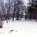 Snow by Cindy Yeakel