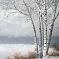 Snow Coming Into The South Shore  by J O Huppler