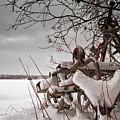 Snow Covered Farming Equipment by Jukka Heinovirta