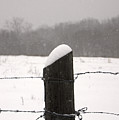 Snow Covered Fence Post by Scott Sanders