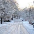 Snow Covered Lane In Paint by Johann Todesengel