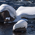Snow Covered River Rocks by Bob Phillips
