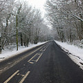 Snow Covered Road by Dave Philp