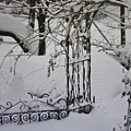 Snow Covered Wisteria Arch by Teresa Mucha