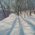 Snow Day At Winnekini by Leslie Alfred McGrath