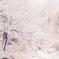 Snow Day by Elena Fattakova