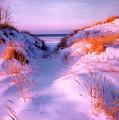 Snow Dune by Elizabeth Reynders