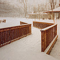 Snow In The Park 3d by Garland Johnson