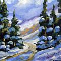 Snow Laden Pines by Richard T Pranke
