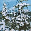 Snow Laden Trees by E Colin Williams ARCA