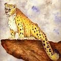 Snow Leopard by Michael Vigliotti