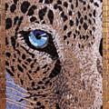 Snow Leopard by Saghar Azmi
