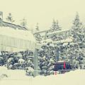 Snow Lift by Kerry Langel