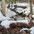 Snow Melt by Sharon Seaward