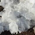 Snow Melting Shapes by Alice Markham