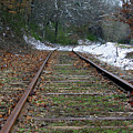 Snow On Rails by Shirley Roberson