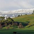 Snow On The Great Western Tiers, Tasmania by Leeo Photography