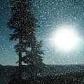 Snow Particles Back Light by P S